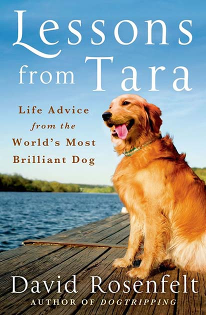 Lessons from Tara by David Rosenfelt