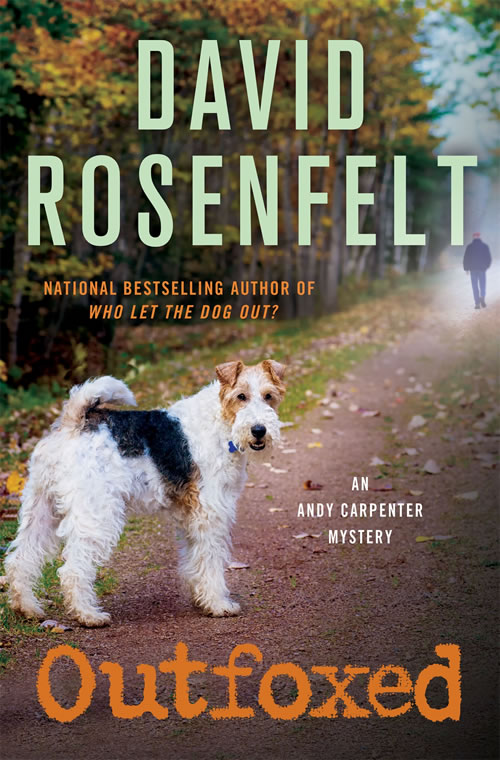Outfoxed by David Rosenfelt | Cover