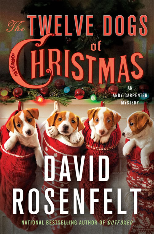 The Twelve Dogs of Christmas by David Rosenfelt | Cover