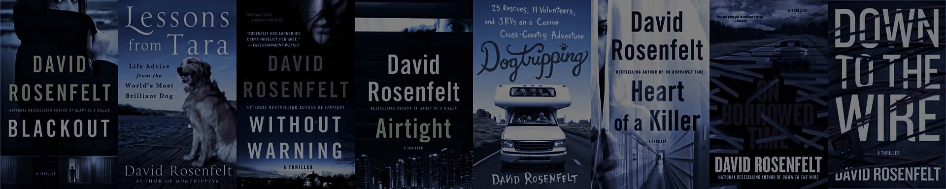 Stand Alone Books by David Rosenfelt